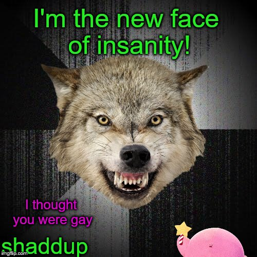 I wasted a submission on this, haven't I? | I thought you were gay I'm the new face of insanity! shaddup | image tagged in memes,buggylememe,insanity wolf | made w/ Imgflip meme maker