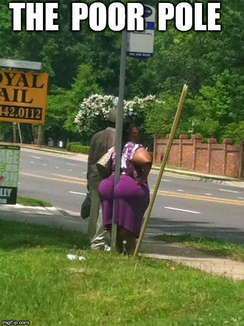DAAAMN! THAT'S A  WHOLE  LOTTA ASS! | THE  POOR  POLE | image tagged in daamn,big,huge,fat,light pole,corner | made w/ Imgflip meme maker