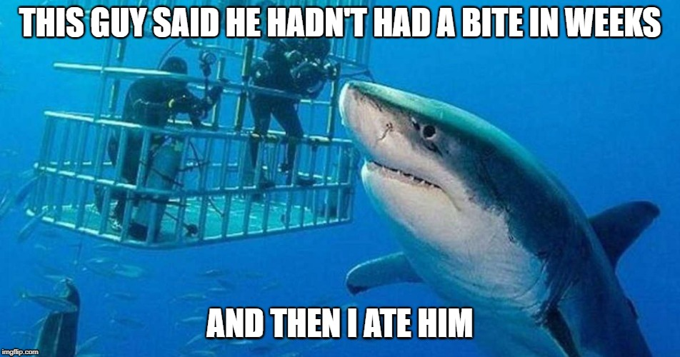 Shark attack? | THIS GUY SAID HE HADN'T HAD A BITE IN WEEKS AND THEN I ATE HIM | image tagged in comedy,shark week,shark,joke | made w/ Imgflip meme maker