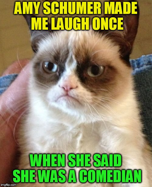 Grumpy Cat Meme | AMY SCHUMER MADE ME LAUGH ONCE WHEN SHE SAID SHE WAS A COMEDIAN | image tagged in memes,grumpy cat | made w/ Imgflip meme maker