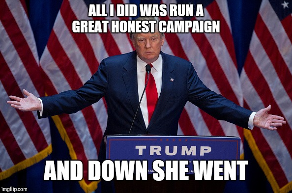 Donald Trump | ALL I DID WAS RUN A GREAT HONEST CAMPAIGN AND DOWN SHE WENT | image tagged in donald trump | made w/ Imgflip meme maker