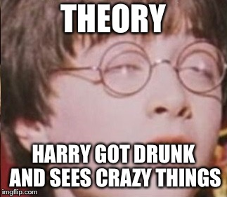 THEORY HARRY GOT DRUNK AND SEES CRAZY THINGS | image tagged in harry potter feels it | made w/ Imgflip meme maker