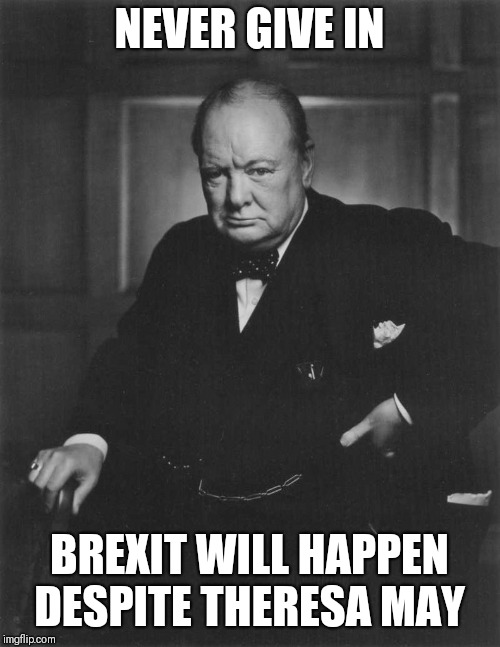 winston churchill |  NEVER GIVE IN; BREXIT WILL HAPPEN DESPITE THERESA MAY | image tagged in winston churchill | made w/ Imgflip meme maker