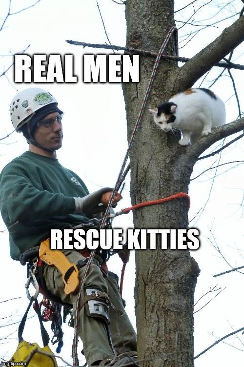 Real Men | REAL MEN RESCUE KITTIES | image tagged in treecat | made w/ Imgflip meme maker
