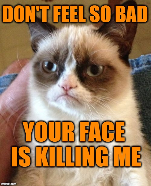 Grumpy Cat Meme | DON'T FEEL SO BAD YOUR FACE IS KILLING ME | image tagged in memes,grumpy cat | made w/ Imgflip meme maker