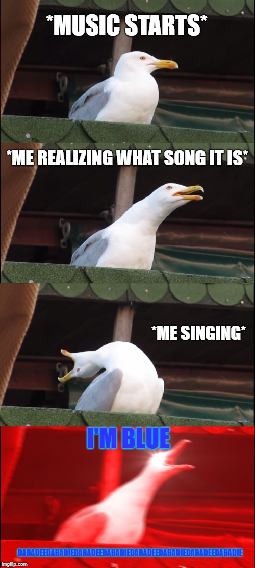 Inhaling Seagull Meme | *MUSIC STARTS* *ME REALIZING WHAT SONG IT IS* *ME SINGING* I'M BLUE DABADEEDABADIEDABADEEDABADIEDABADEEDABADIEDABADEEDABADIE | image tagged in memes,inhaling seagull | made w/ Imgflip meme maker
