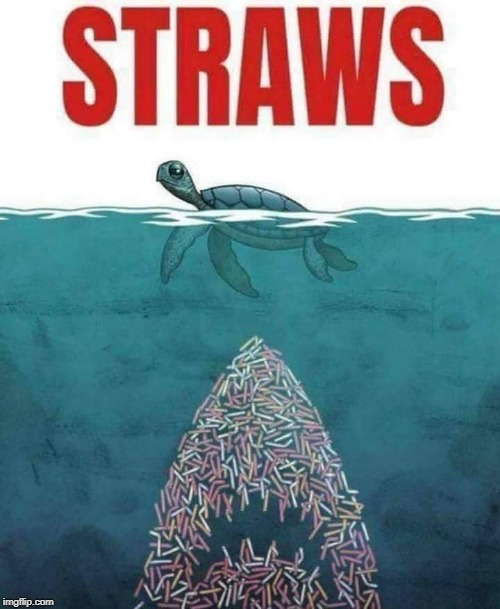 This is the last straw meme, until I find a better one! | STRAWS | image tagged in straw ban,plastic straws,jaws,save the earth,memes | made w/ Imgflip meme maker
