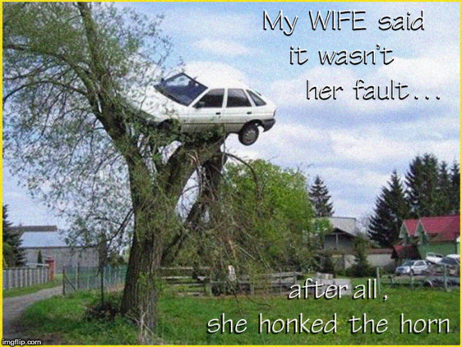 WOMEN DRIVERS...it was the tree's fault | image tagged in lol so funny,funny memes,wives,women drivers,too funny,dank memes | made w/ Imgflip meme maker