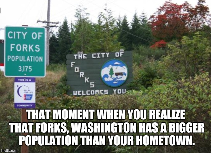 Forks, Washington  | THAT MOMENT WHEN YOU REALIZE THAT FORKS, WASHINGTON HAS A BIGGER POPULATION THAN YOUR HOMETOWN. | image tagged in fork,washington,population | made w/ Imgflip meme maker