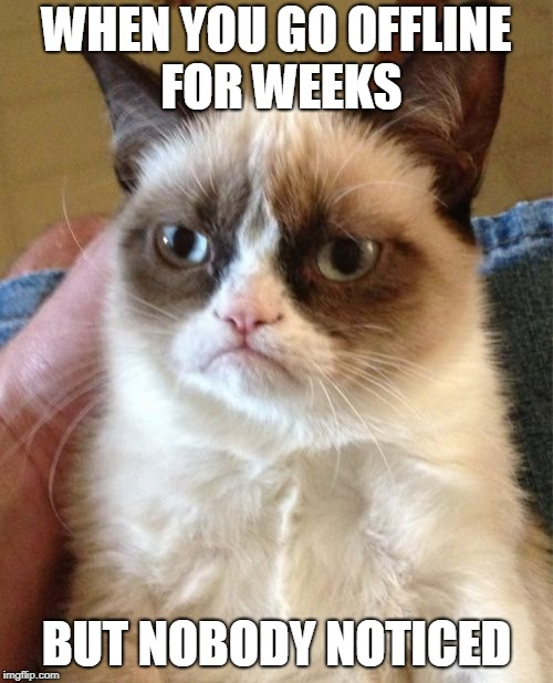 Grumpy Cat Meme | WHEN YOU GO OFFLINE FOR WEEKS BUT NOBODY NOTICED | image tagged in memes,grumpy cat | made w/ Imgflip meme maker