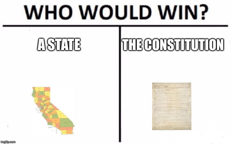 Who Would Win? Meme | A STATE THE CONSTITUTION | image tagged in memes,who would win | made w/ Imgflip meme maker
