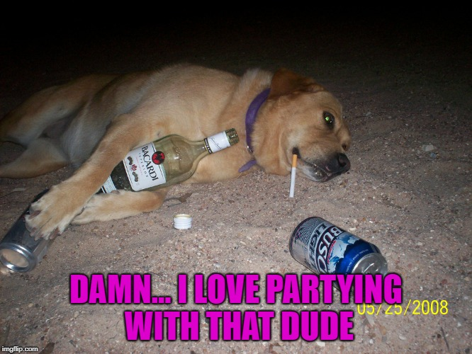 DAMN... I LOVE PARTYING WITH THAT DUDE | made w/ Imgflip meme maker