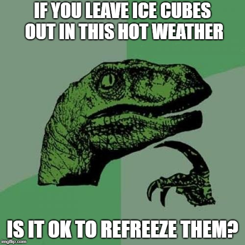 Philosoraptor Meme | IF YOU LEAVE ICE CUBES OUT IN THIS HOT WEATHER IS IT OK TO REFREEZE THEM? | image tagged in memes,philosoraptor | made w/ Imgflip meme maker