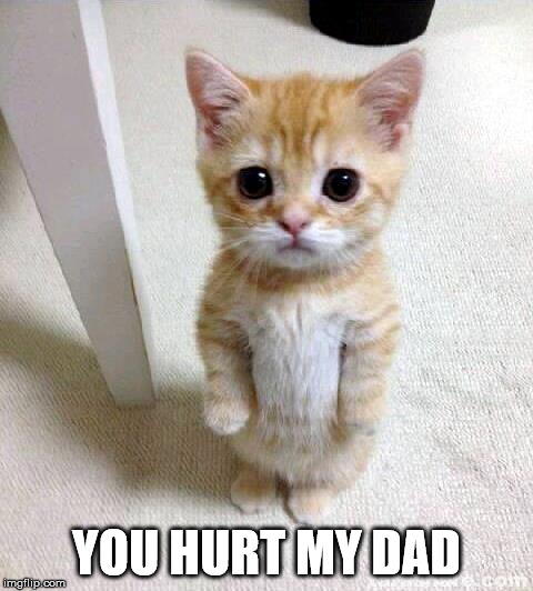 Cute Cat Meme | YOU HURT MY DAD | image tagged in memes,cute cat | made w/ Imgflip meme maker