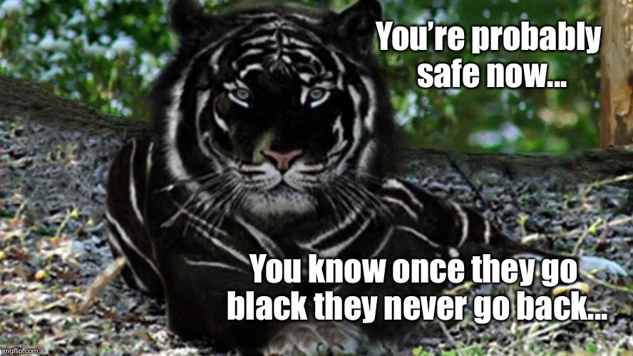 You're probably safe now... You know once they go black they never go back... | made w/ Imgflip meme maker