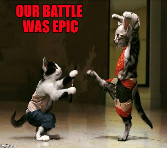 OUR BATTLE WAS EPIC | made w/ Imgflip meme maker
