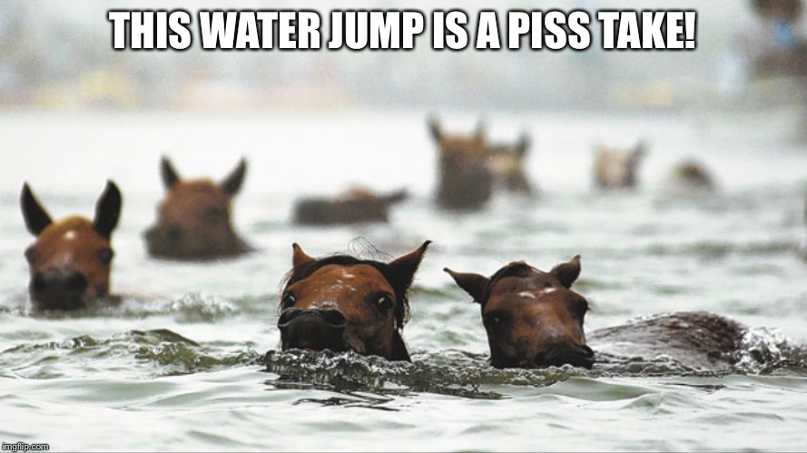 Horse Racing  | THIS WATER JUMP IS A PISS TAKE! | image tagged in horse racing,funny horse | made w/ Imgflip meme maker