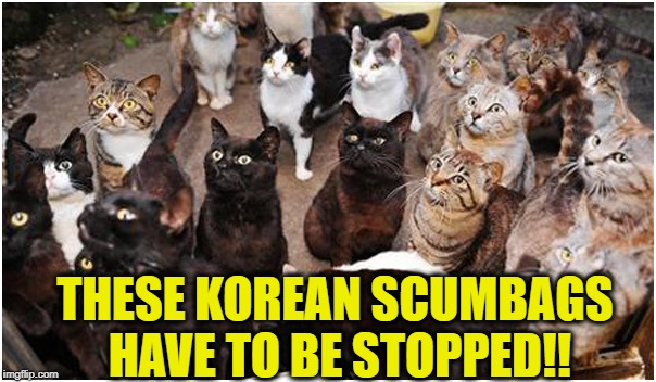 THESE KOREAN SCUMBAGS HAVE TO BE STOPPED!! | made w/ Imgflip meme maker
