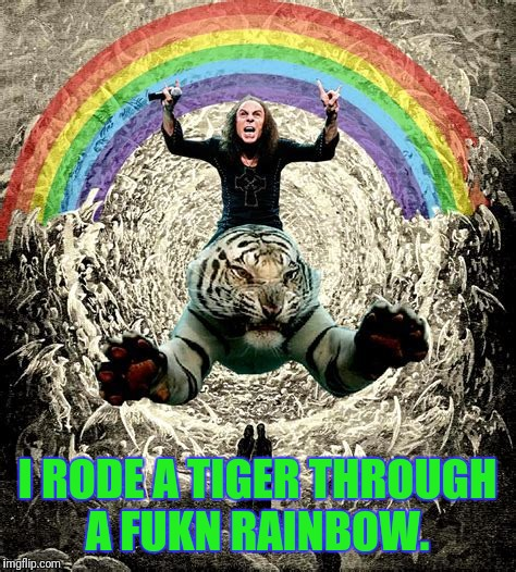 I RODE A TIGER THROUGH A FUKN RAINBOW. | made w/ Imgflip meme maker