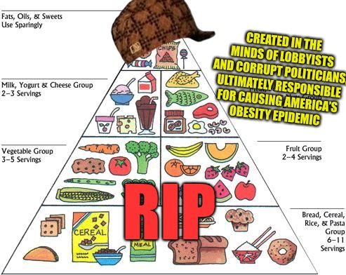 Go Keito  | RIP CREATED IN THE MINDS OF LOBBYISTS AND CORRUPT POLITICIANS, ULTIMATELY RESPONSIBLE FOR CAUSING AMERICA'S OBESITY EPIDEMIC | image tagged in food pyramid,scumbag,dieting,diet,health,statism | made w/ Imgflip meme maker