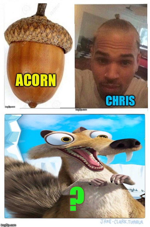 Oh boy, oh boy! | ACORN CHRIS ? | image tagged in memes,two buttons,ice age,chris brown,funny,squirrel | made w/ Imgflip meme maker
