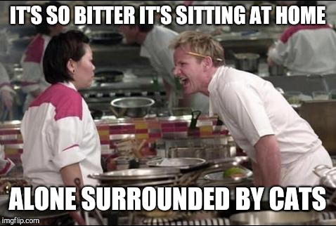 Angry Chef Gordon Ramsay Meme | IT'S SO BITTER IT'S SITTING AT HOME ALONE SURROUNDED BY CATS | image tagged in memes,angry chef gordon ramsay | made w/ Imgflip meme maker