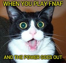 lol | WHEN YOU PLAY FNAF AND THE POWER GOES OUT | image tagged in surprised cat,suprised,fnaf,five nights at freddy's,memes,cat | made w/ Imgflip meme maker