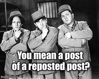Three Stooges Thinking | You mean a post of a reposted post? | image tagged in three stooges thinking | made w/ Imgflip meme maker