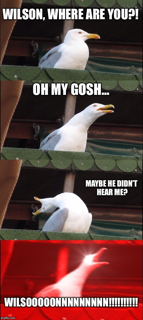 Trying to get someone's attention be like | WILSON, WHERE ARE YOU?! OH MY GOSH... MAYBE HE DIDN'T HEAR ME? WILSOOOOONNNNNNNNN!!!!!!!!!! | image tagged in memes,inhaling seagull | made w/ Imgflip meme maker