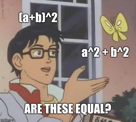 Sorry, they are not. You forgot the 2ab | (a+b)^2 a^2 + b^2 ARE THESE EQUAL? | image tagged in memes,is this a pigeon | made w/ Imgflip meme maker