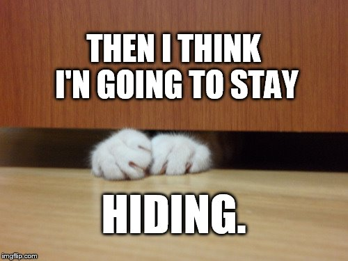 THEN I THINK I'N GOING TO STAY HIDING. | made w/ Imgflip meme maker