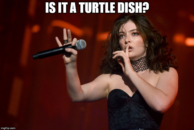 Lorde Coachella | IS IT A TURTLE DISH? | image tagged in lorde coachella | made w/ Imgflip meme maker