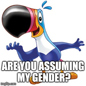 Toucan sam | ARE YOU ASSUMING MY GENDER? | image tagged in toucan sam | made w/ Imgflip meme maker