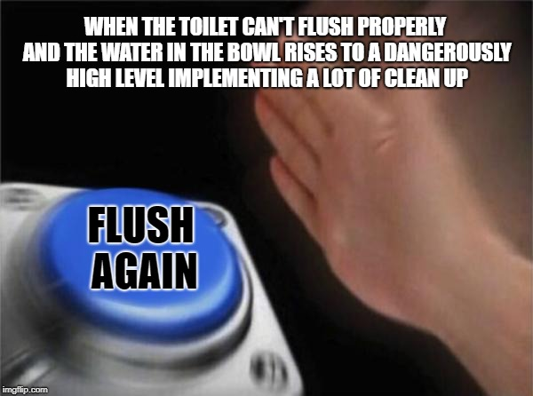Blank Nut Button Meme | WHEN THE TOILET CAN'T FLUSH PROPERLY AND THE WATER IN THE BOWL RISES TO A DANGEROUSLY HIGH LEVEL IMPLEMENTING A LOT OF CLEAN UP FLUSH AGAIN | image tagged in memes,blank nut button | made w/ Imgflip meme maker