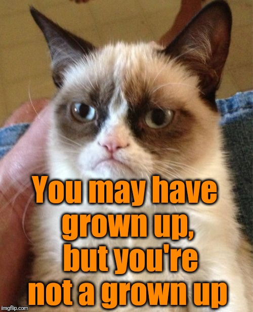 Grumpy Cat Meme | You may have grown up,  but you're not a grown up | image tagged in memes,grumpy cat | made w/ Imgflip meme maker