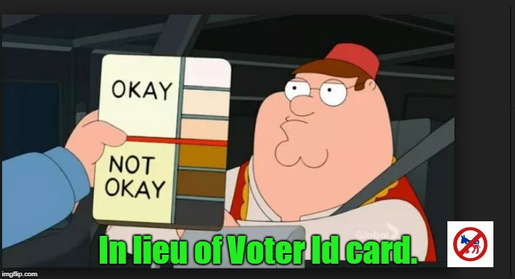 In lieu of Voter Id card. | image tagged in family guy,family guy peter,voter id,voter fraud | made w/ Imgflip meme maker