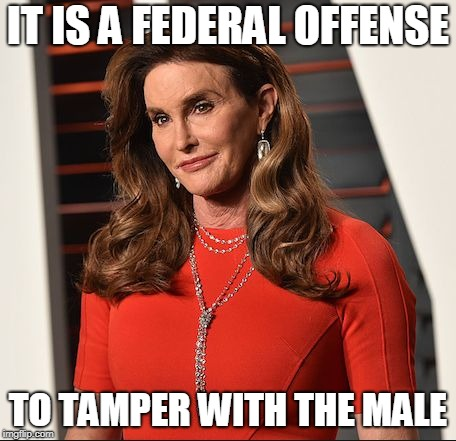 Caitlyn Jenner Federal Offense | IT IS A FEDERAL OFFENSE TO TAMPER WITH THE MALE | image tagged in caitlyn jenner,transgender,trans | made w/ Imgflip meme maker