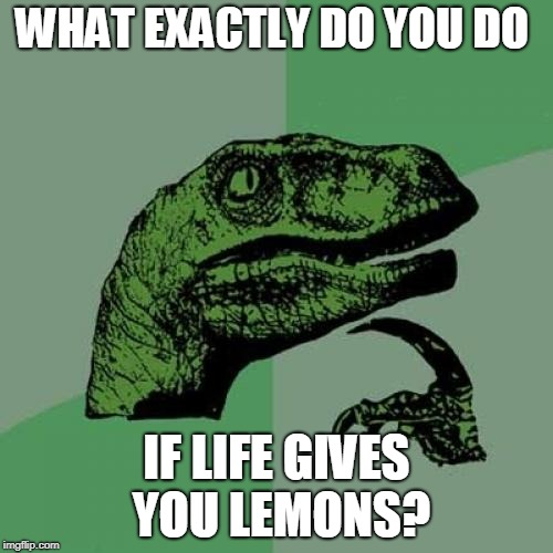 Other than eat them or make lemonade  | WHAT EXACTLY DO YOU DO IF LIFE GIVES YOU LEMONS? | image tagged in memes,philosoraptor,when life gives you lemons,curry2017 | made w/ Imgflip meme maker