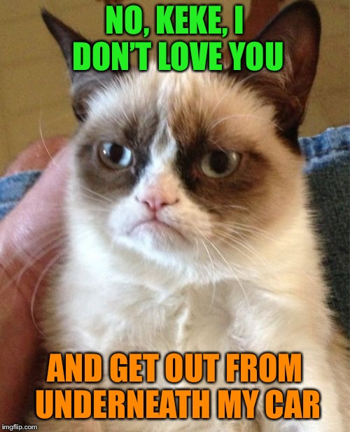 Even grumpy's not that stupid | NO, KEKE, I DON'T LOVE YOU AND GET OUT FROM UNDERNEATH MY CAR | image tagged in memes,grumpy cat,stupid,internet,challenge | made w/ Imgflip meme maker