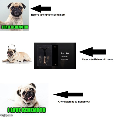 Behemoth  God = Dog | I HATE BEHEMOTH! I LOVE BEHEMOTH | image tagged in memes,doctordoomsday180,dogs,black metal,death metal,pug | made w/ Imgflip meme maker