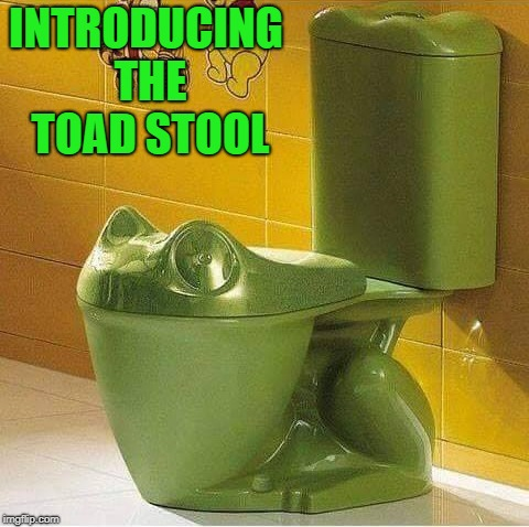 for frog lovers | INTRODUCING THE TOAD STOOL | image tagged in toad stool,toad,toilet,funny | made w/ Imgflip meme maker