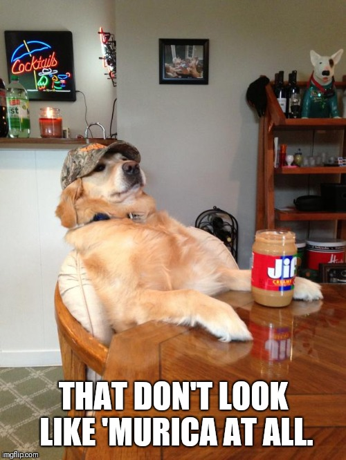 redneck dog | THAT DON'T LOOK LIKE 'MURICA AT ALL. | image tagged in redneck dog | made w/ Imgflip meme maker