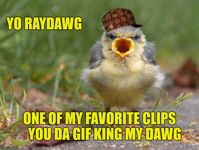 YO RAYDAWG ONE OF MY FAVORITE CLIPS    YOU DA GIF KING MY DAWG | made w/ Imgflip meme maker