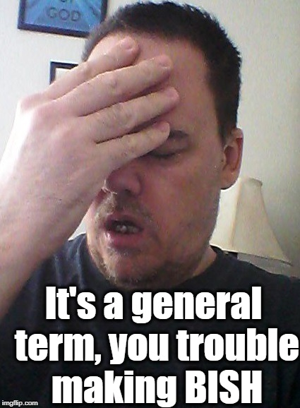 face palm | It's a general term, you trouble making BISH | image tagged in face palm | made w/ Imgflip meme maker