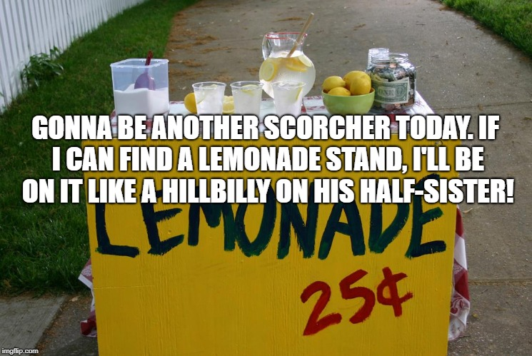 lemonade stand | GONNA BE ANOTHER SCORCHER TODAY. IF I CAN FIND A LEMONADE STAND, I'LL BE ON IT LIKE A HILLBILLY ON HIS HALF-SISTER! | image tagged in lemonade stand,hot,funny,memes,funny memes,hillbilly | made w/ Imgflip meme maker