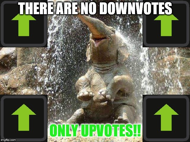 THERE ARE NO DOWNVOTES ONLY UPVOTES!! | image tagged in upvote elephant | made w/ Imgflip meme maker