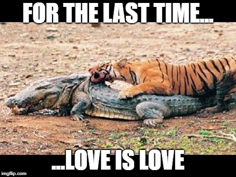 "It's called ""Interspecies Erotica"" Tiger Week Jul 29 - Aug 5, A TigerLegend1046 event 