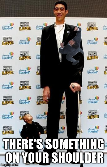 the tallest and shortest man in the world | THERE'S SOMETHING ON YOUR SHOULDER | image tagged in the tallest and shortest man in the world | made w/ Imgflip meme maker