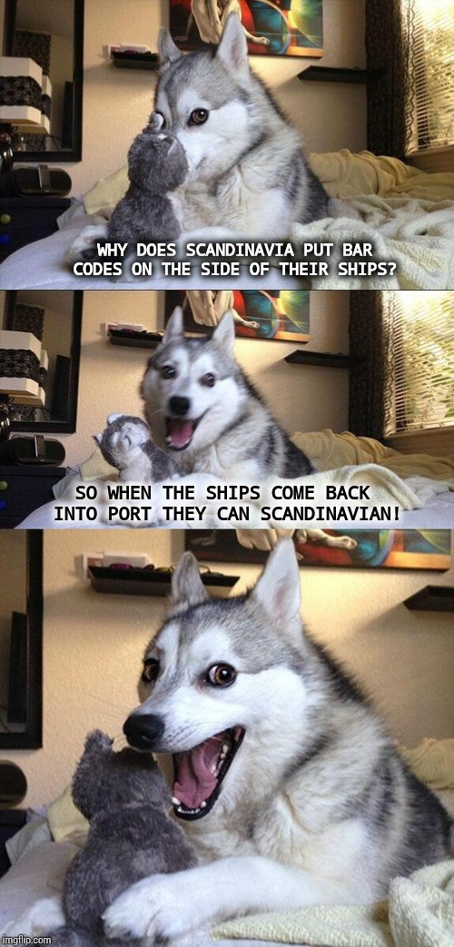 Scan Da Navy In. | WHY DOES SCANDINAVIA PUT BAR CODES ON THE SIDE OF THEIR SHIPS? SO WHEN THE SHIPS COME BACK INTO PORT THEY CAN SCANDINAVIAN! | image tagged in memes,bad pun dog,meme,bad joke,funny stuff,rofl | made w/ Imgflip meme maker