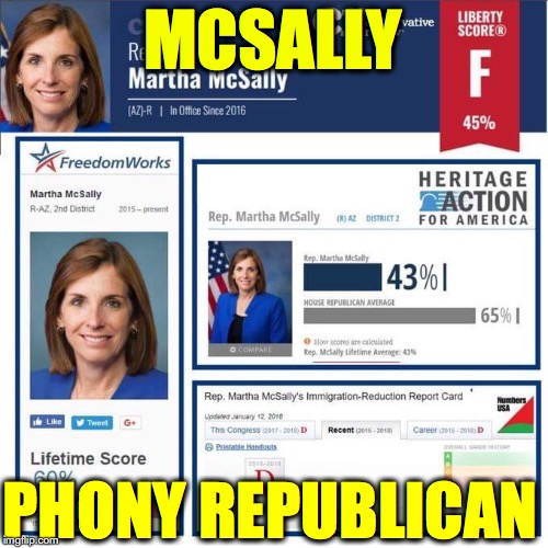 Vote Out Fake Republican and RINO Martha McSally | MCSALLY PHONY REPUBLICAN | image tagged in rino,nevertrump,martha mcsally,phony,arizona,senate | made w/ Imgflip meme maker